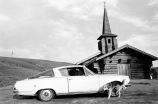 the-dog-the-church-the-barracuda-t